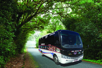 Port Douglas to Cairns City Return Shuttle