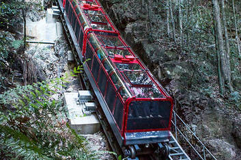 Blue Mountains Special Charter Tour