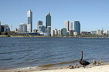 Grayline Perth City Highlights Morning Tour