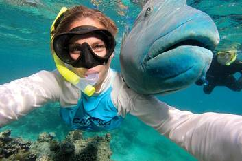 Snorkelling with Wrasse